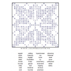 WORDSEARCH -COLD